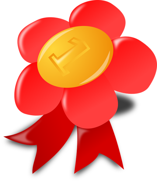 award-152042_960_720