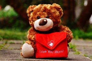 teddy-1338923_960_720