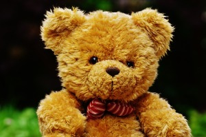 teddy-1444649_960_720